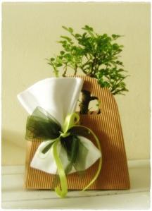 Bomboniera bonsai base
