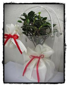 Bomboniera bonsai in shopper trasparente, con raso e rosa portaconfetti