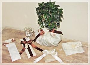 Bomboniere bonsai e dintorni