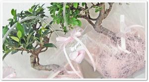 Bomboniere per Battesimo in rosa
