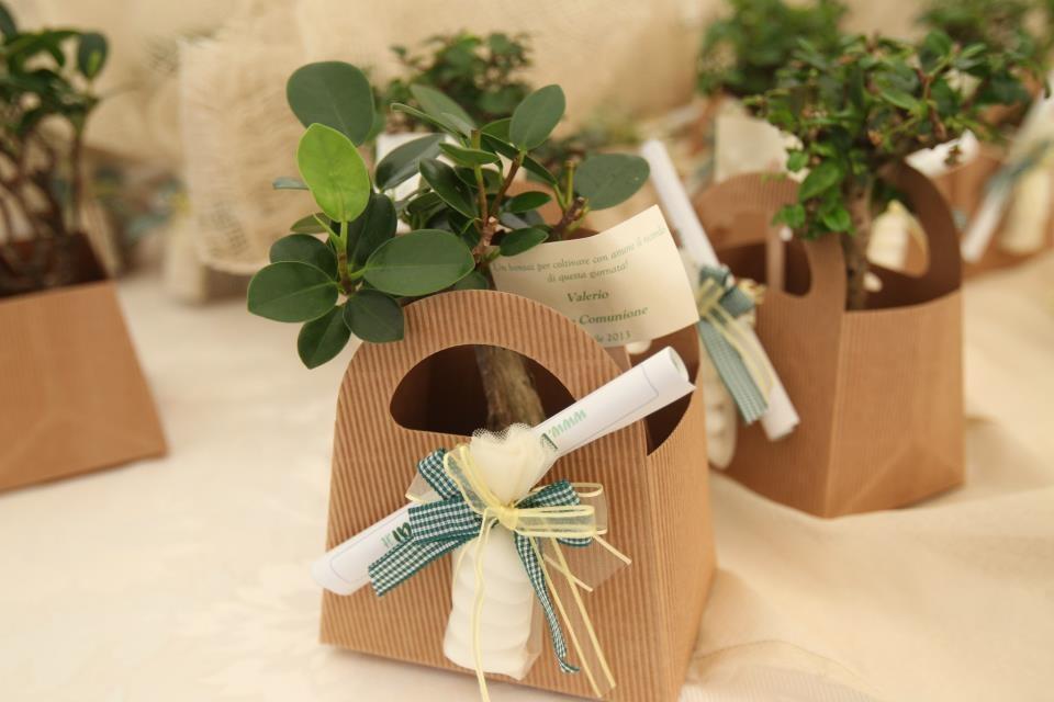 abbastanza Bomboniera bonsai per comunione | Vogliadibonsai.it - Bomboniere  PP02