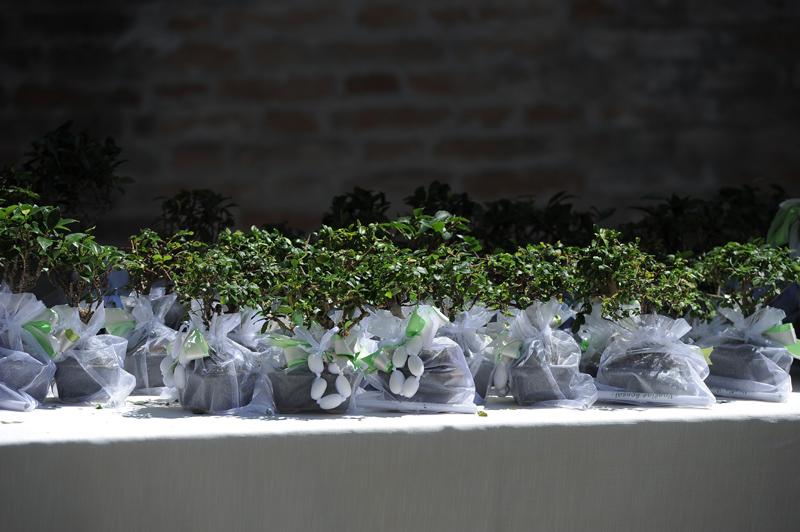 Eccezionale bomboniere solidali matrimonio   Vogliadibonsai.it - Bomboniere Bonsai KT01