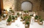 Bomboniere bonsai per il tuo matrimonio